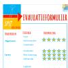 SPIT Evaluatieformulier BEELDEND